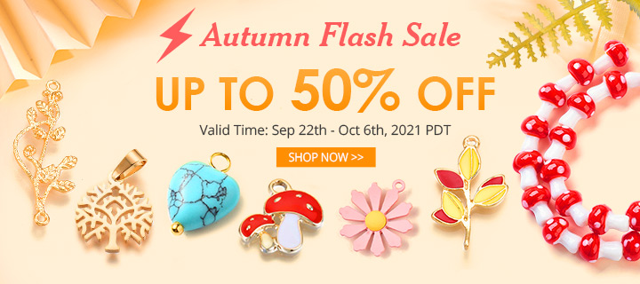 Autumn Flash Sale Up to 50% OFF