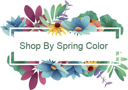 Shop By Spring Color