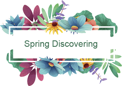 Spring Discovering