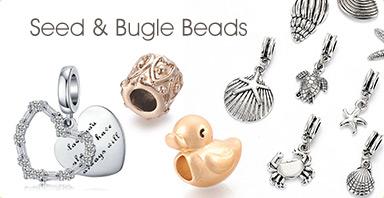 Seed & Bugle Beads