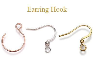 Earring Hook